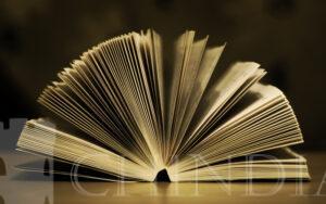 EDITORIAL: Pentru a te citi, citește