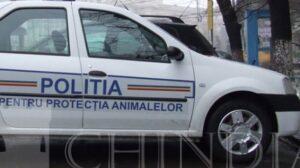 Posturi scoase la concurs din sursă externă pentru Poliția Protecția Animalelor