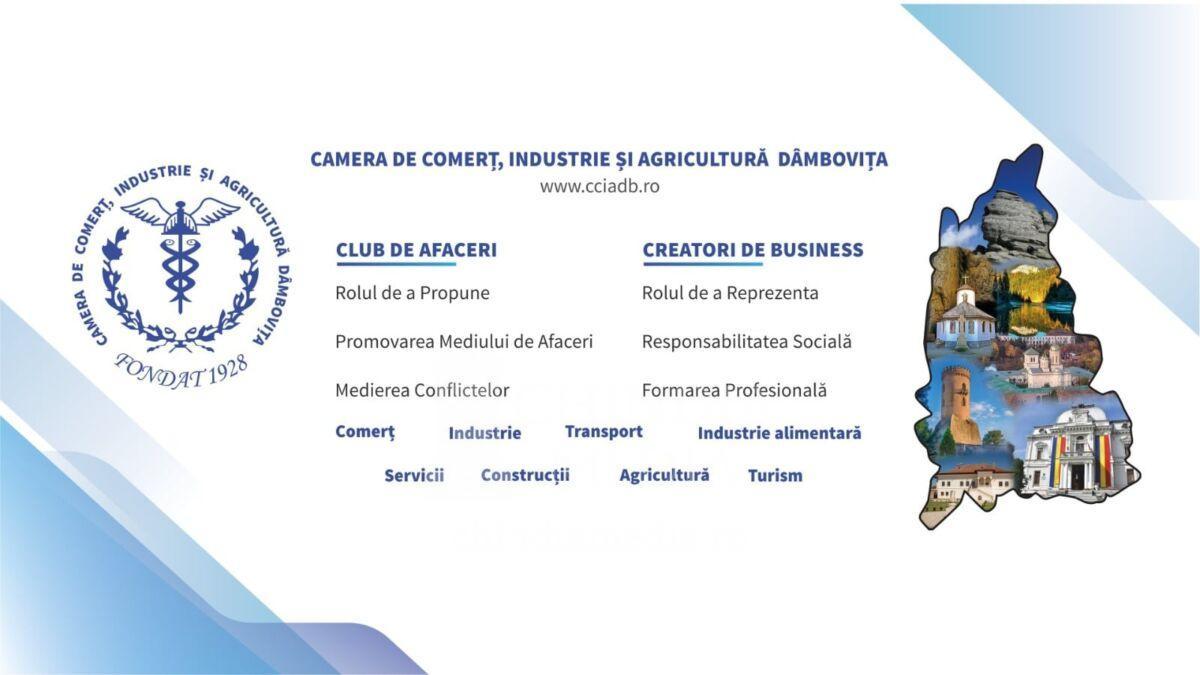 Soluții tehnice pentru digitalizarea microîntreprinderilor, întreprinderilor mici și mijlocii prin Programul Național al Guvernului României