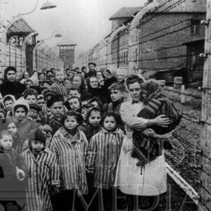 1.5 milioane de copii uciși…. Să nu uităm lectiile trecutului!