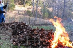 Garda de Mediu Dâmbovița: Arderea frunzelor uscate în gospodării se sancționează cu amendă de 800 de lei