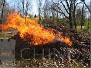Garda de Mediu: Arderea frunzelor de la curăţenia de primăvară este poluare