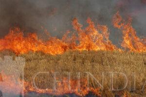 Garda de Mediu Dâmbovița : Fermierii care incendiază miriștile riscă să nu primească bani pentru acele suprafețe